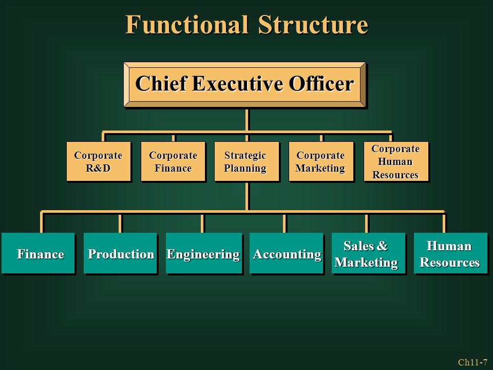 role of chief executive officer in strategic process essay A strategic planning manager should be in a supporting or assisting role to the corporate strategic planning team, led by the chief executive.