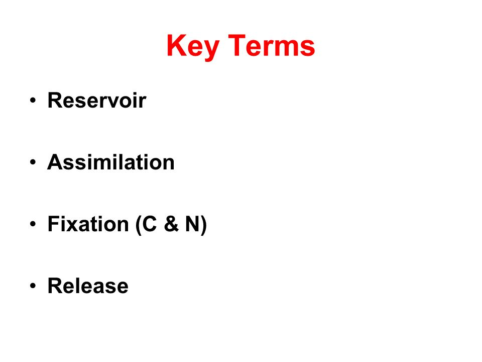 Key Terms Reservoir Assimilation Fixation (C & N) Release