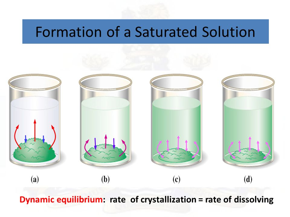 Solubility Curves Day 65 – Solubility and Saturation ...