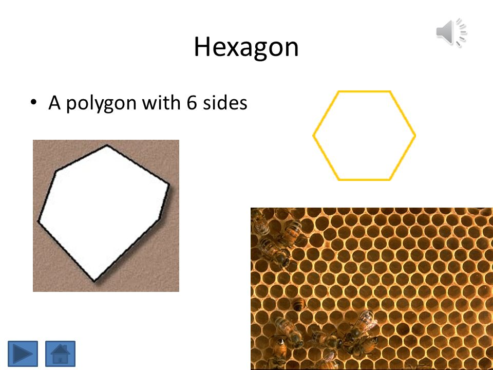 Hexagon A polygon with 6 sides Hexagons are found in bee hives