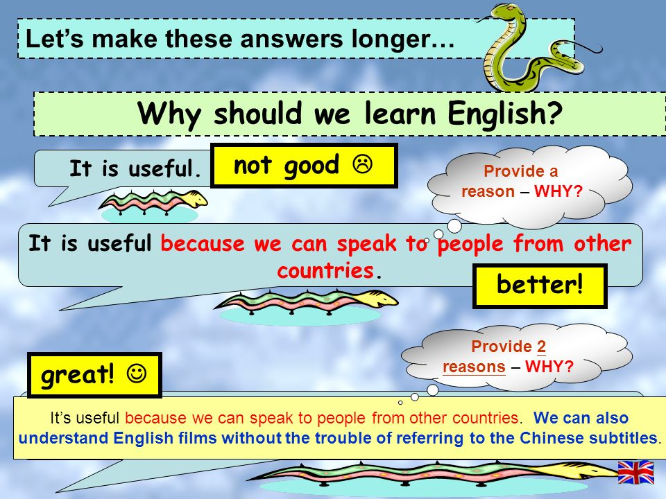 THE REASONS WHY A STUDENT SHOULD STUDY ENGLISH …