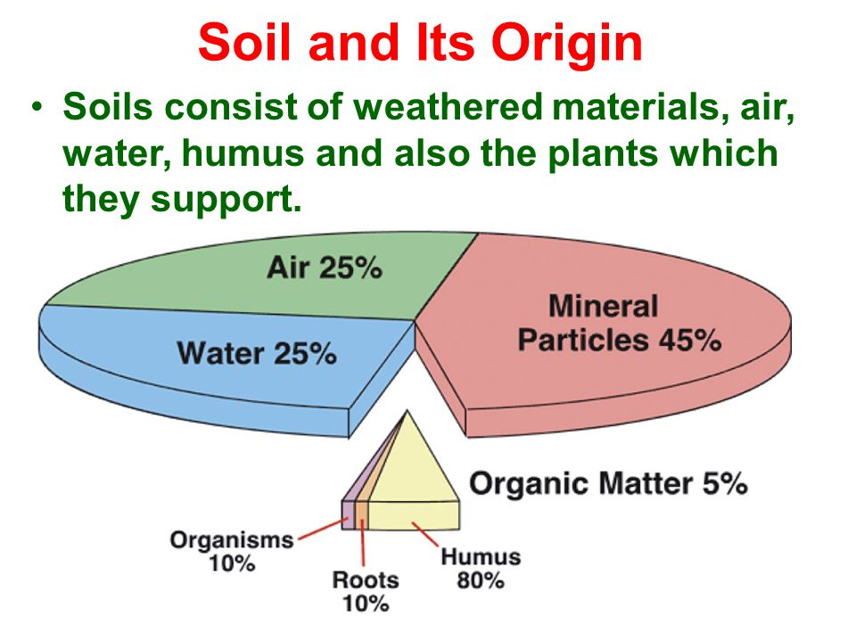 Weathering soil sendimentary metamorphic rocks ppt for Origin and formation of soil