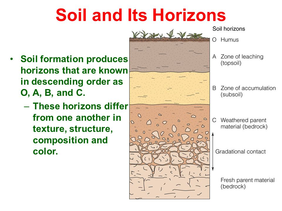 Weathering soil sendimentary metamorphic rocks ppt for Why the soil forms layers in water