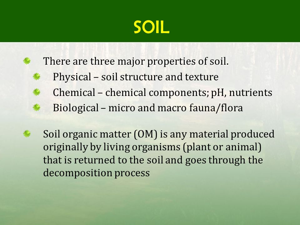 Organic matter decomposition ppt video online download for Four main components of soil