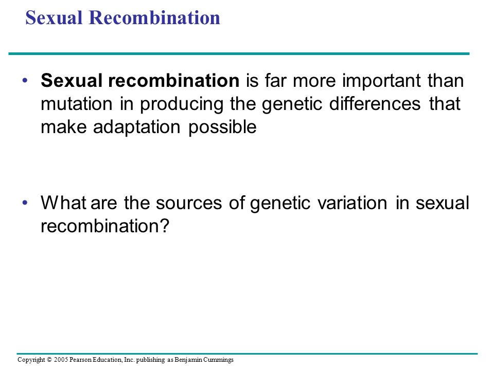Sexual Recombination Sexual recombination is far more important than mutation in producing the genetic differences that make adaptation possible.