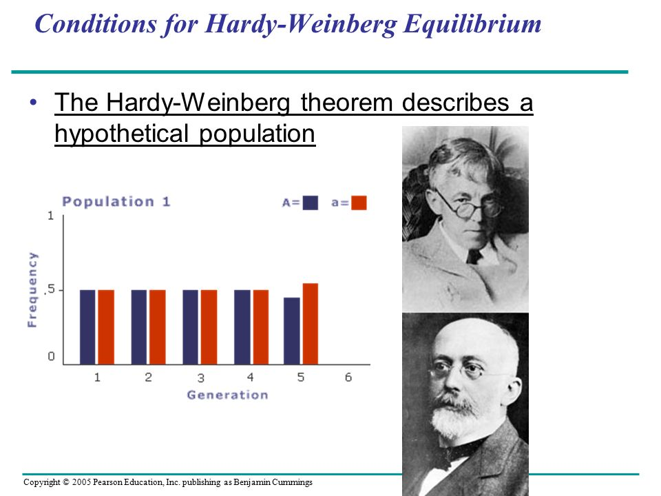 four cases on population genetics and evolution using the hardy weinberg equation Using this experiment we will be able to simulate natural selection and use the hardy weinberg equation to determine the frequencies of the alleles introduction in this case you will modify the simulation to make it more realistic.