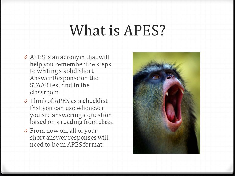apes essay questions answers Looking for ap environmental science practice tests  this test also contains  answers to all the questions, as well as scoring guidelines  perhaps you need  to learn how to complete your essays faster, or you realized you.