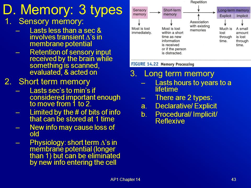 how to help someone with short term memory loss