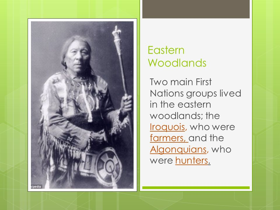 algonquins and iroquois farmers of the woodlands essay Transcript of the iroquois and the algonquins iroquois tribes weapons shelter the iroquois were a nation of five tribes that lived in the northeastern woodlands.