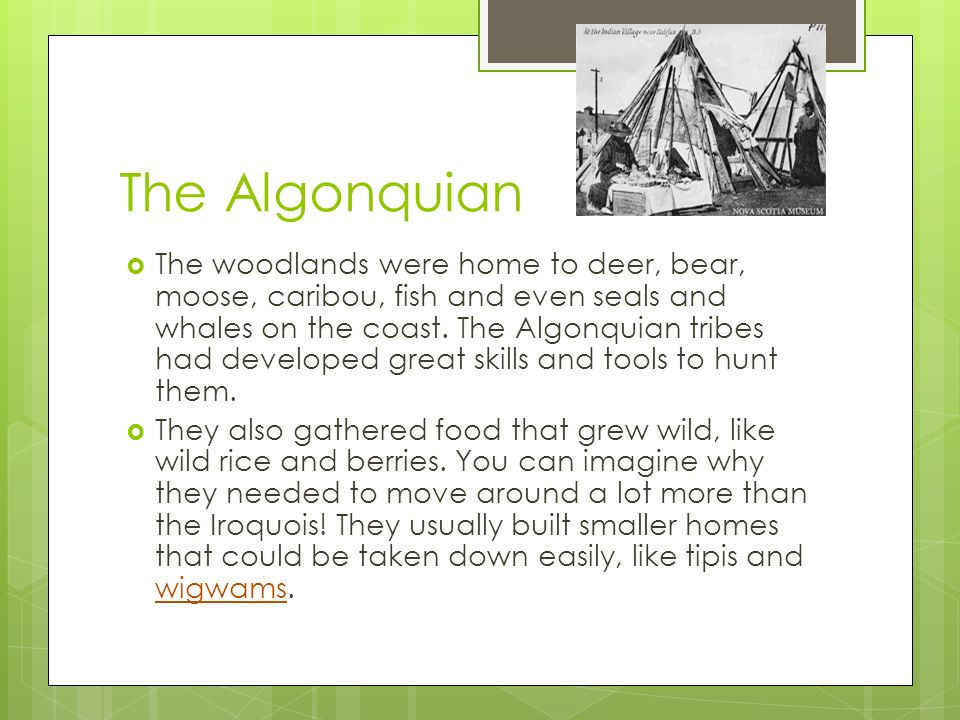algonquins and iroquois farmers of the woodlands essay Avoiding common mistakes in historical essays  a map depicting the divide  between iroquois (left) and algonquian (right) peoples in  the hopewellian  period in the eastern woodland region spread over the cultural  some  historians estimate that native americans were farming squash in illinois as early  as 5000 bce.