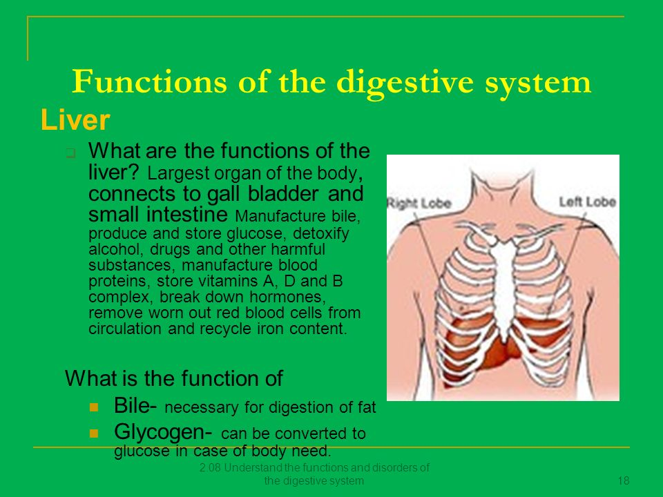 208 Understand The Functions And Disorders Of The Digestive System