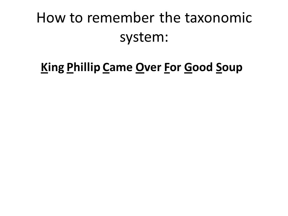 How to remember the taxonomic system: