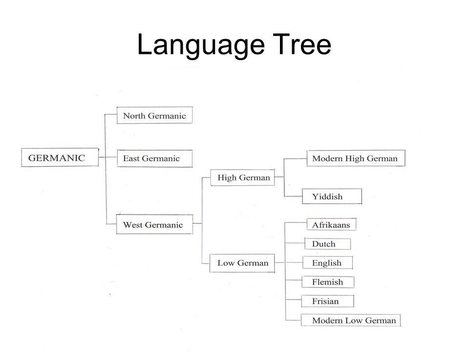 Language Tree