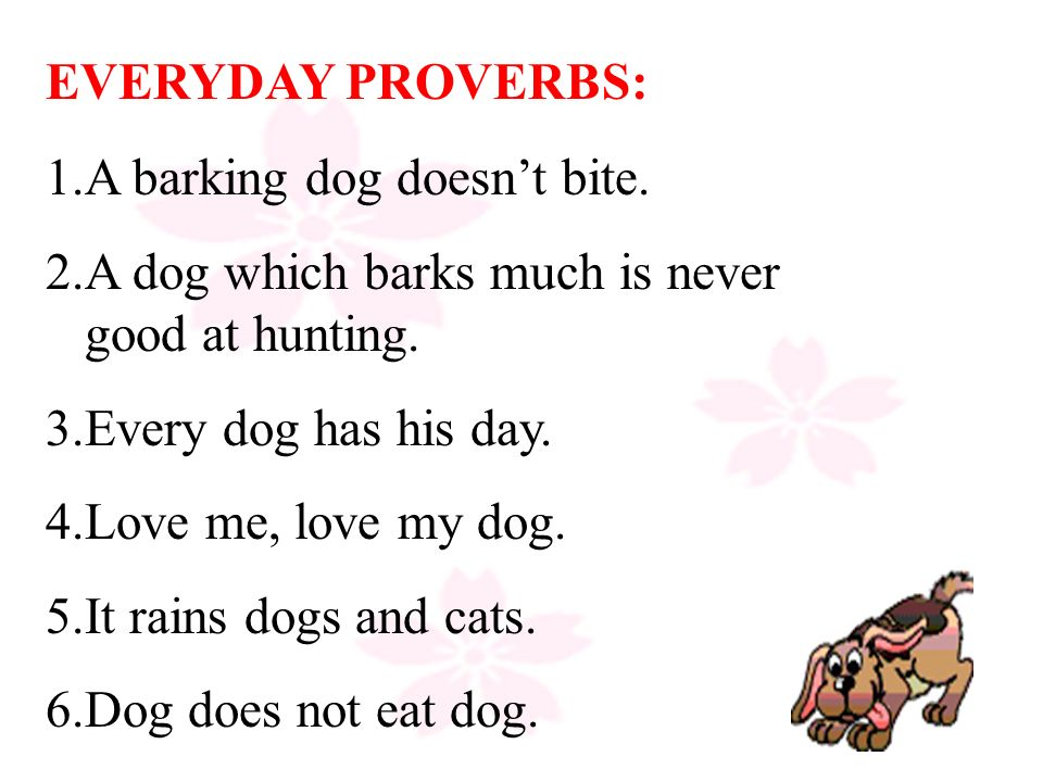 essay on proverb every dog has its day Essay on proverb every dog has its day the first course of pills is generally started on the first day of a period (day 1) or the fifth day after bleeding.