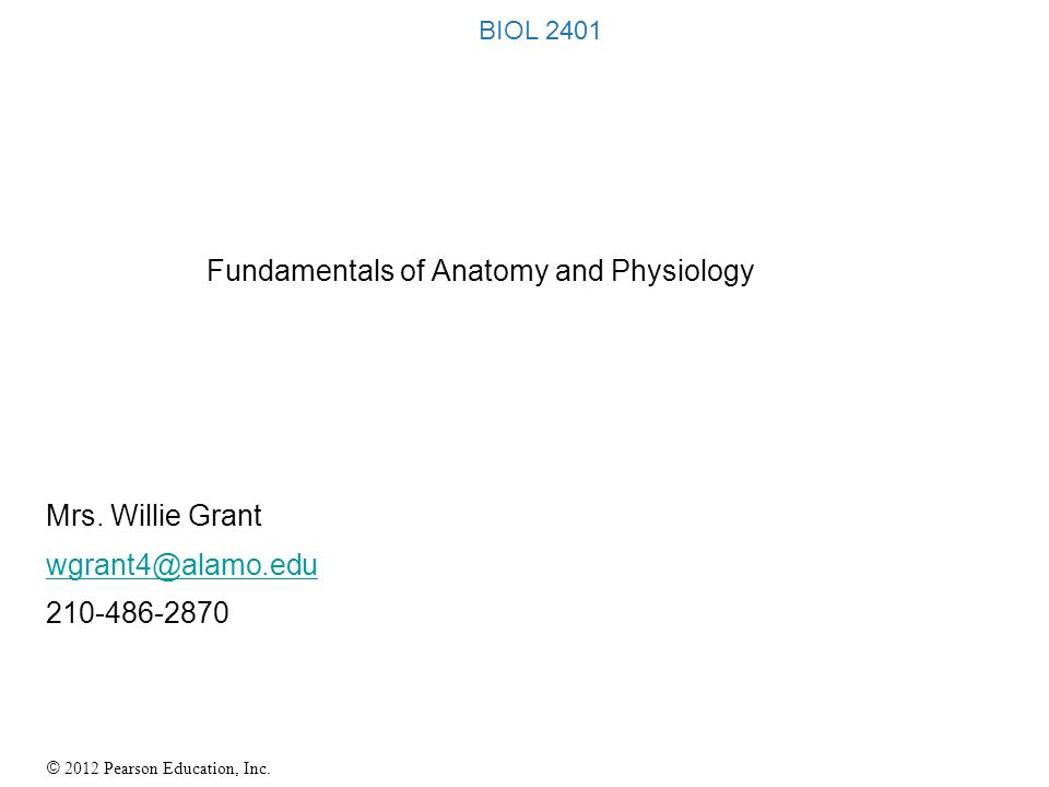 Fundamentals Of Anatomy Image collections - human body anatomy