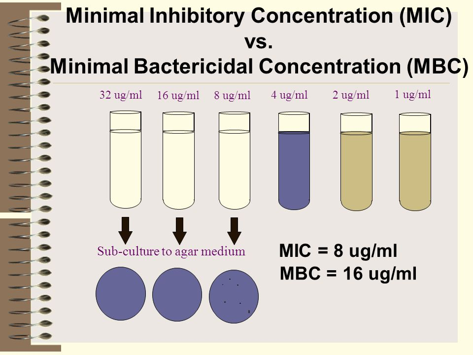 minimum inhibitory concentration thesis The cell extracts of the isolates were examined for antimicrobial activity by determination of minimum inhibitory concentration (mic) and minimum phd thesis.