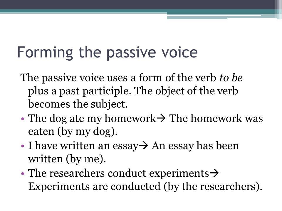 voice essay