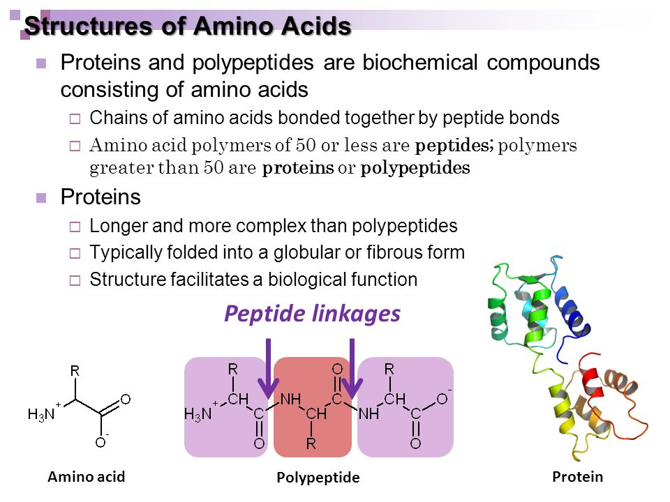 Amino Acids Online Video Section 5.1, page ppt download Proteins Amino Acids And Peptides