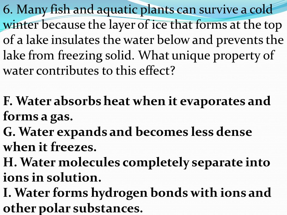 SC.912.L Properties of Water that contribute to Earth's ...