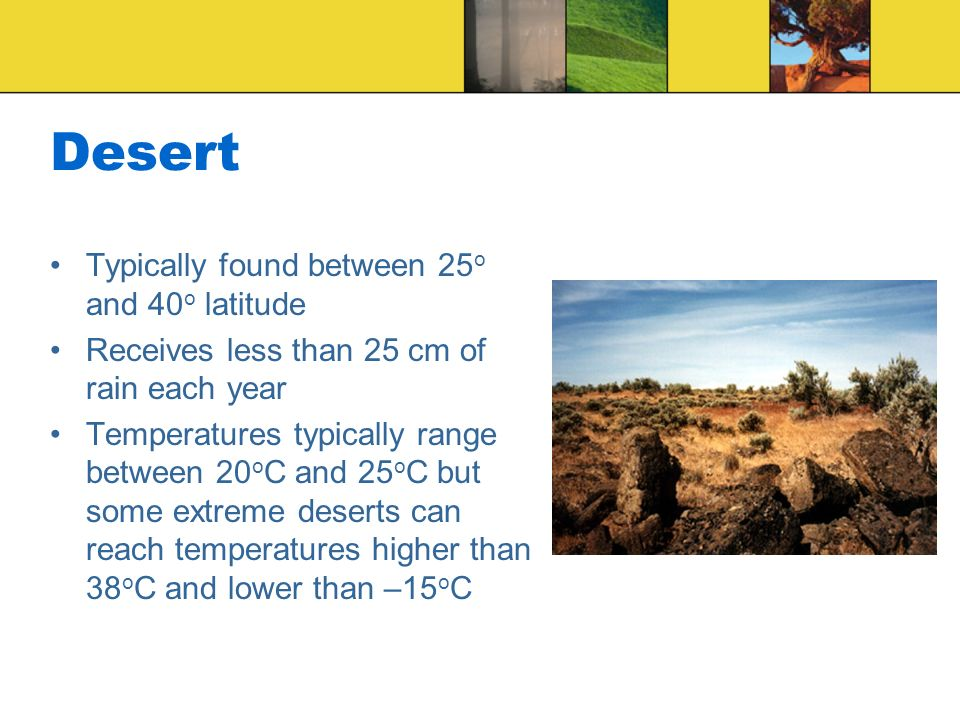 Desert Typically found between 25o and 40o latitude