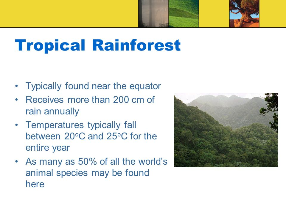 Tropical Rainforest Typically found near the equator