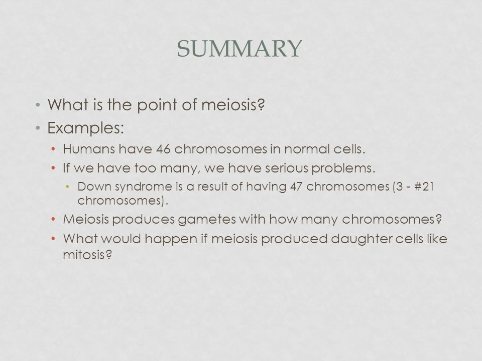 Meiosis Directed Reading - ppt video online download