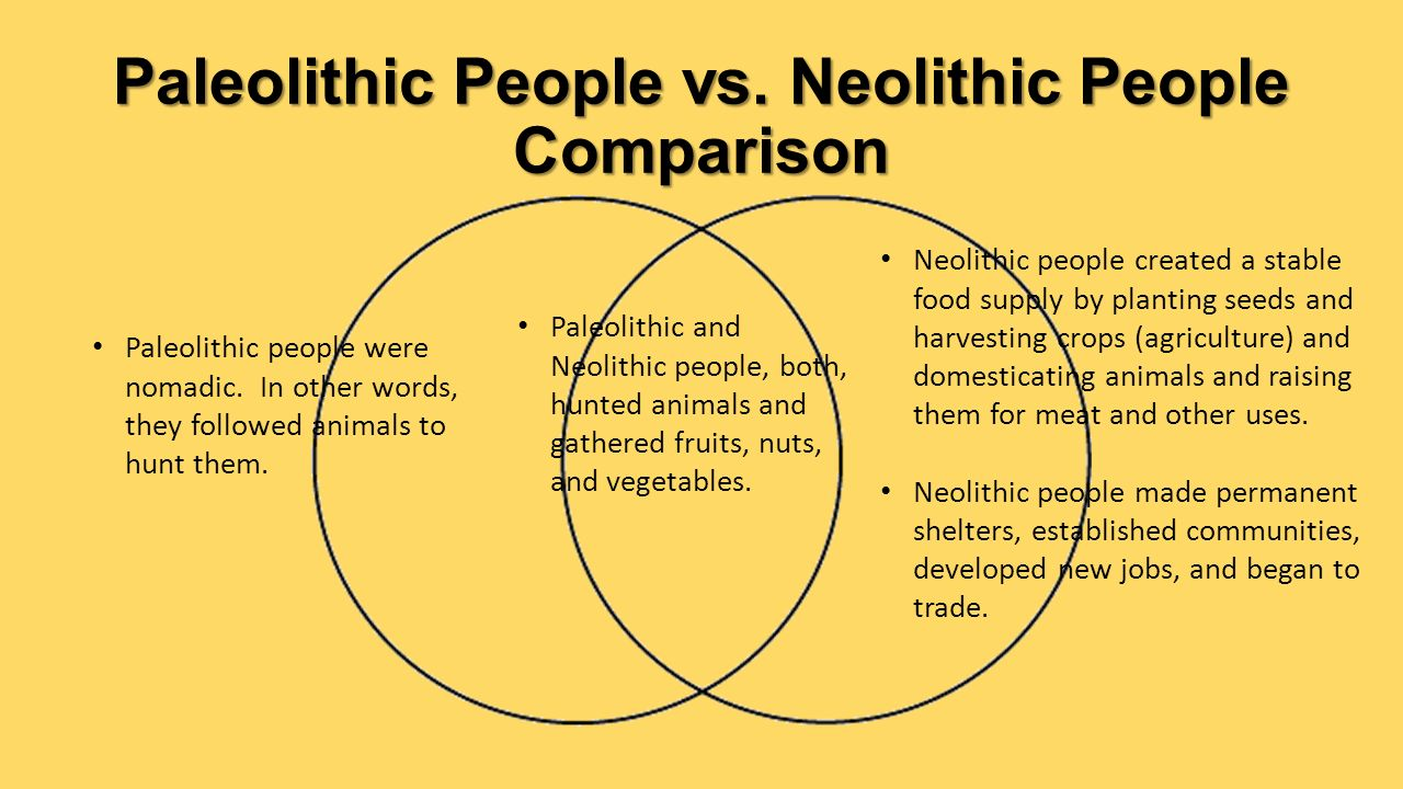 Difference Between Paleolithic and Neolithic