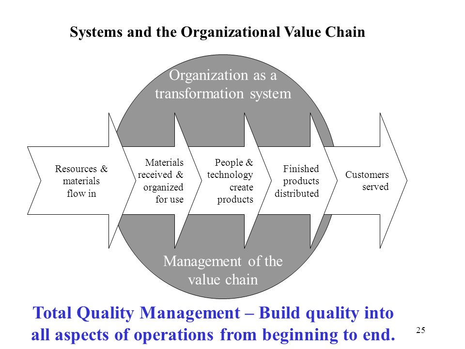 Systems and the Organizational Value Chain