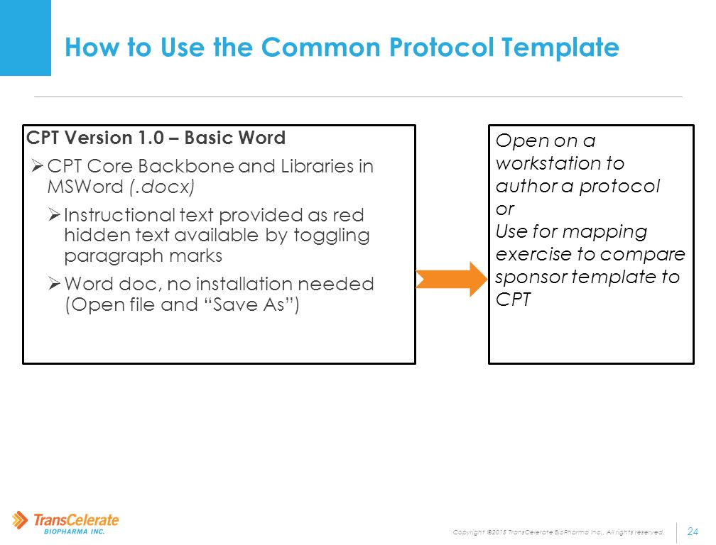 Objectives and guiding principles for the implementation for Protocol document template