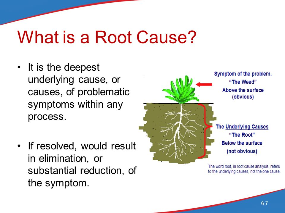 E.1 What are the root causes of our ecological problems?