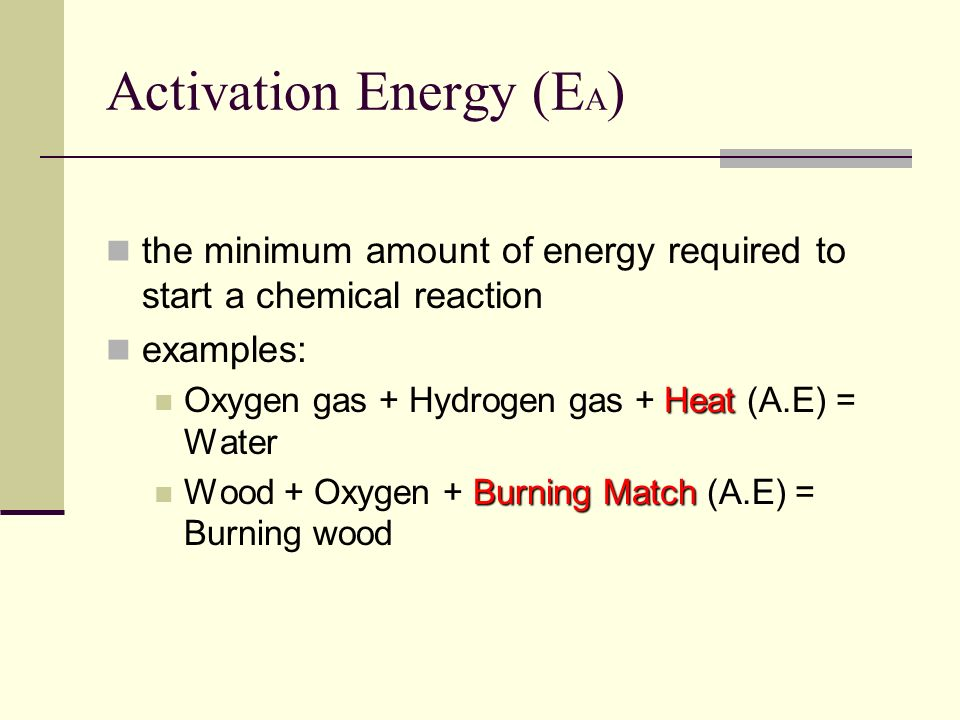 BIOLOGY 12 Enzymes. - ppt video online download