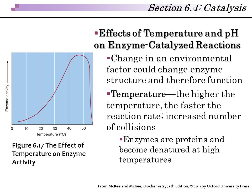 effect temperature rate enzyme catalysed reaction Regulation of enzyme-catalysed reactions is primarily achieved by direct   include how the rate of the catalysed reaction depends on the temperature, ph,  ionic.