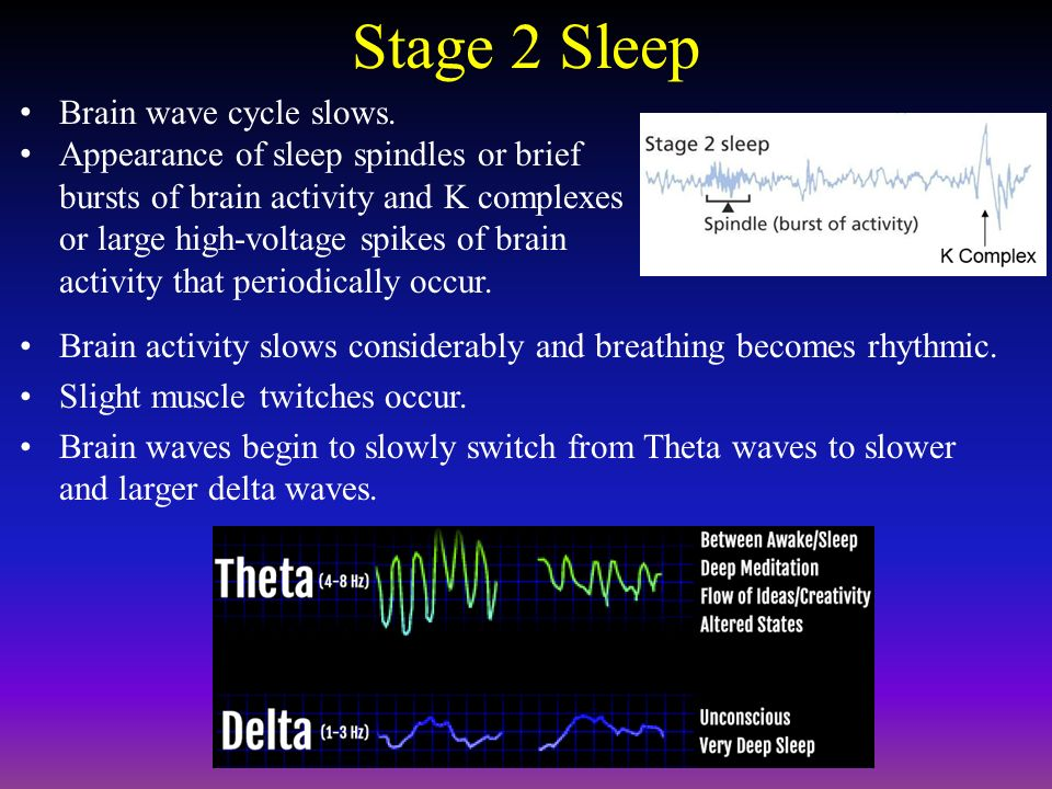 in what stage do sleep spindles begin to appear on the eeg machine