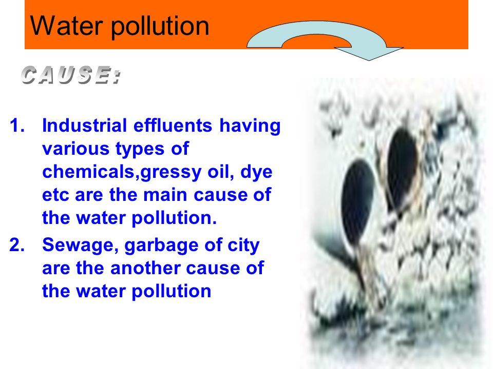industrial effluents in the water pollution essay Essay on water pollution in india | types | pollution here is a compilation of essays on 'water pollution' for industrial effluents are the most hazardous.