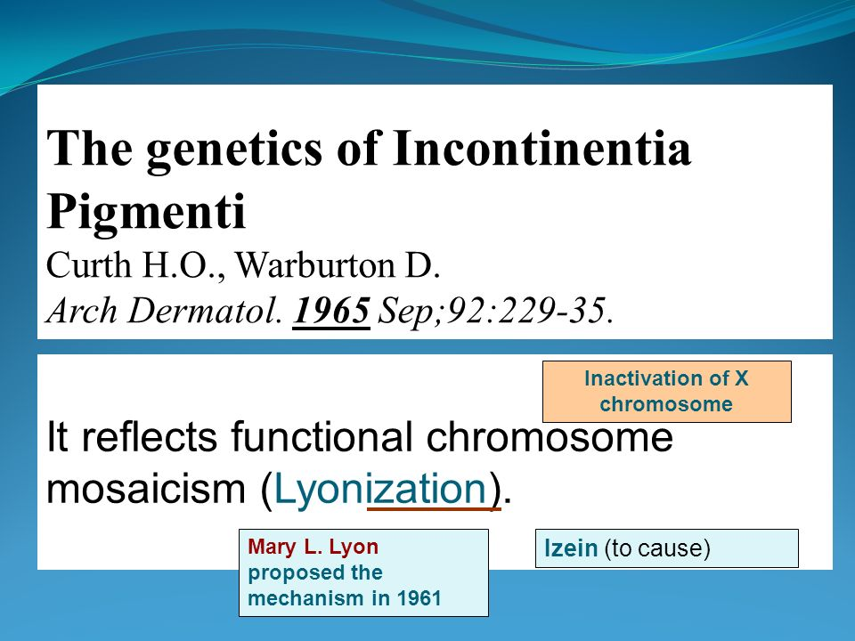 Inactivation of X chromosome