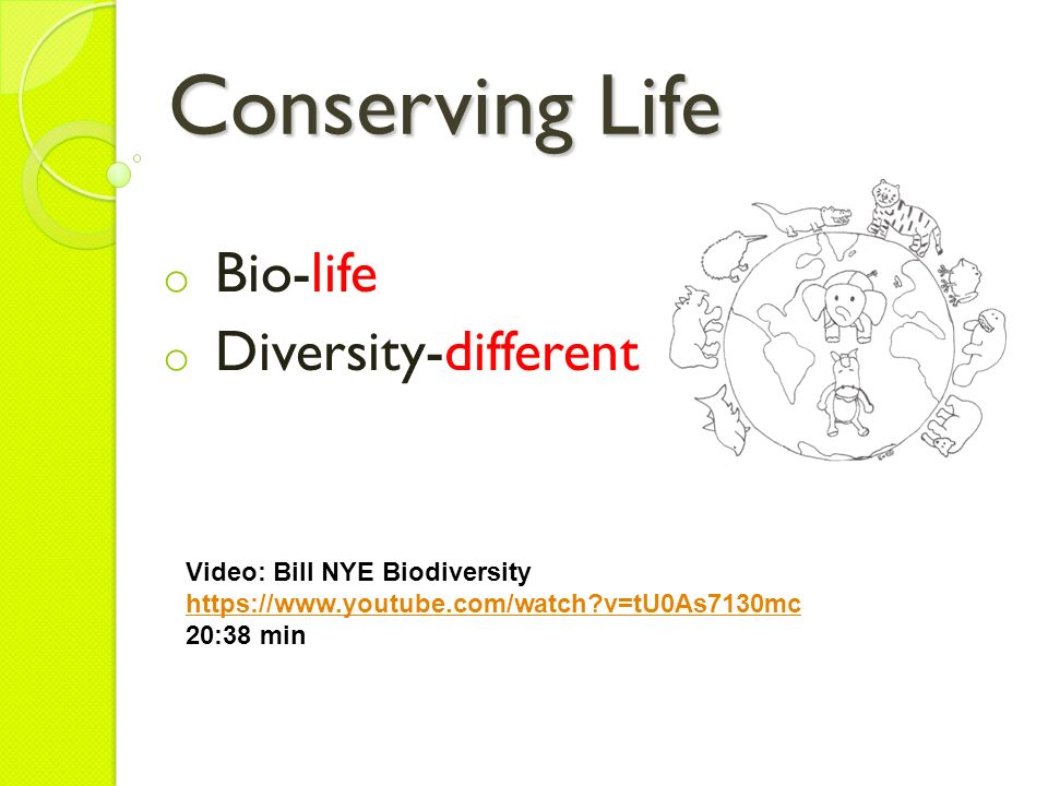 Page 15 Biodiversity ppt download – Bill Nye Biodiversity Worksheet