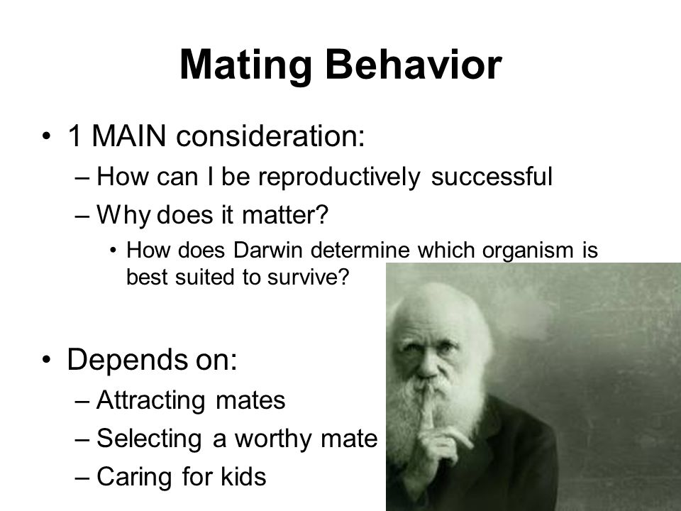 Mating Behavior 1 MAIN consideration: Depends on: