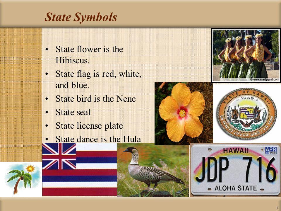 Symbols Of Texas State Symbols Usa Oukasfo