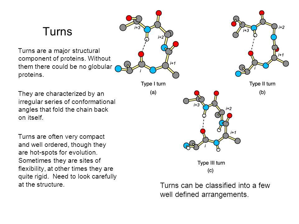globular protein x ray crystallography essay