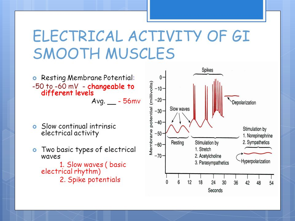 activity of gastrointestinal smooth muscle Acetylcholine binds to which type of receptor located on smooth muscle, glands, and cardiac muscle the sacral part of the parasympathetic division serves which of the during vigorous activity.