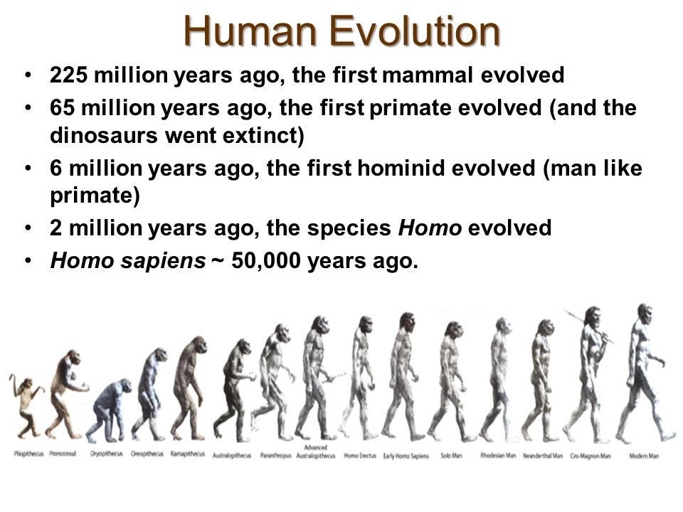 chapters 10 principles of evolution ppt video online
