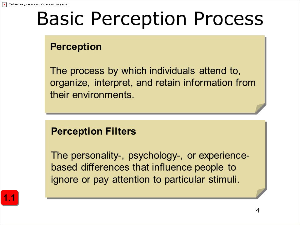 knowing the diversity of perceptive knowledge as experienced through the individuals perception and  Perception (from the latin perceptio) is the organization, identification, and  interpretation of sensory information in order to represent and understand the  presented information, or the environment all perception involves signals that go  through the nervous system, which in  in the case of visual perception, some  people can actually see the percept.