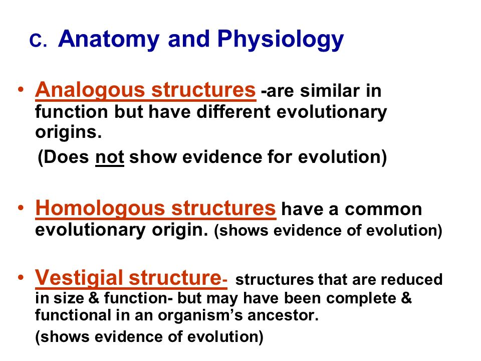 Chapter 15: Theory of Evolution - ppt video online download