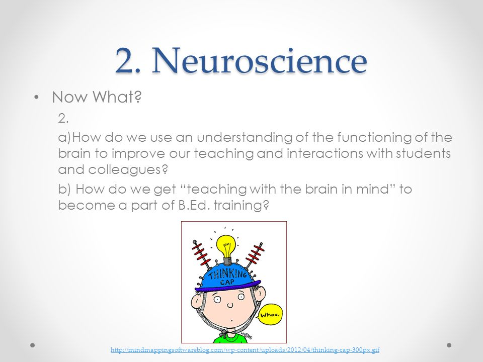 2. Neuroscience Now What 2.