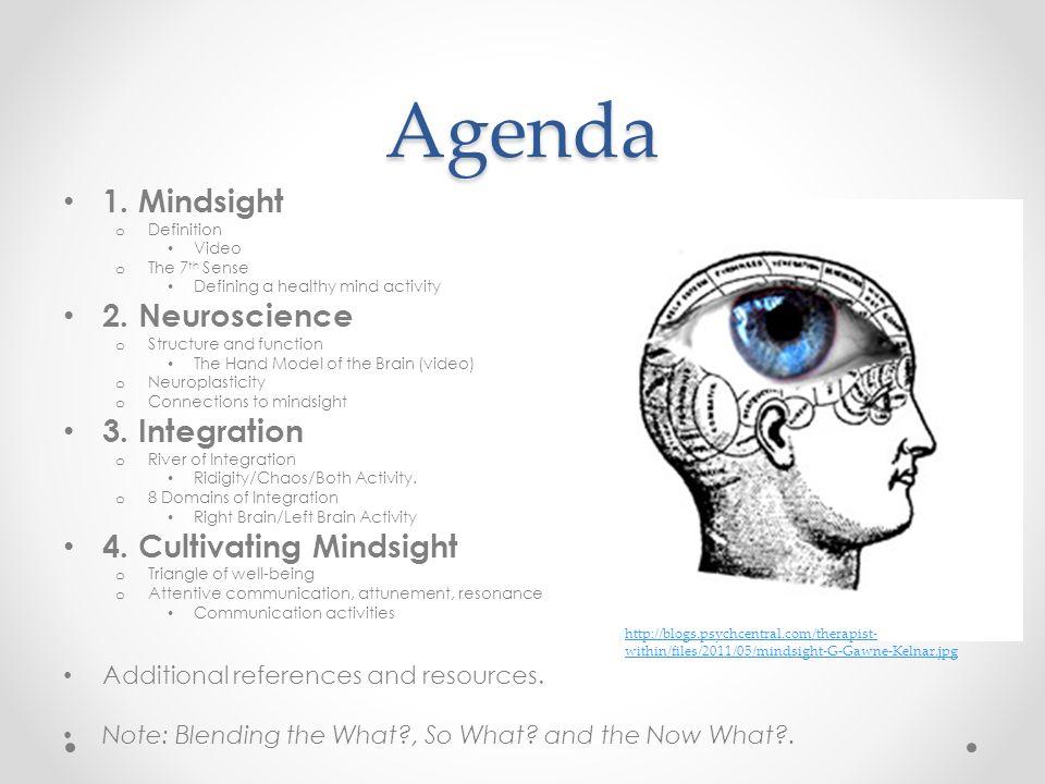 Agenda 1. Mindsight 2. Neuroscience 3. Integration