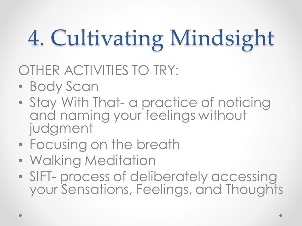 4. Cultivating Mindsight