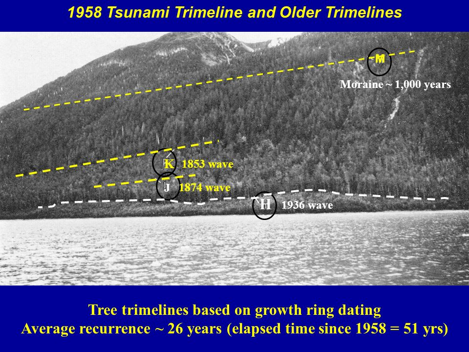tree ring dating and the orphan tsunami