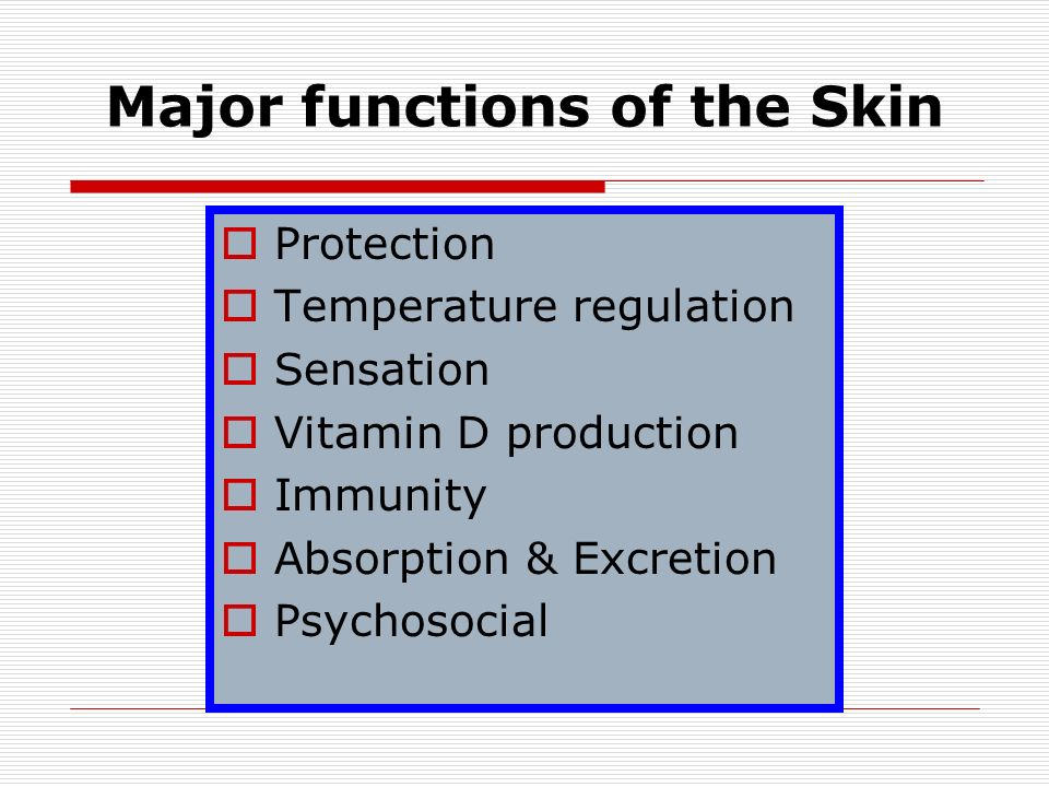 major functions of the skin Fensive function of the skin is to maintain homeostasis  the major constituents  of the barrier – lipid bilayers and corneocytes embedded in a cornified envelope .