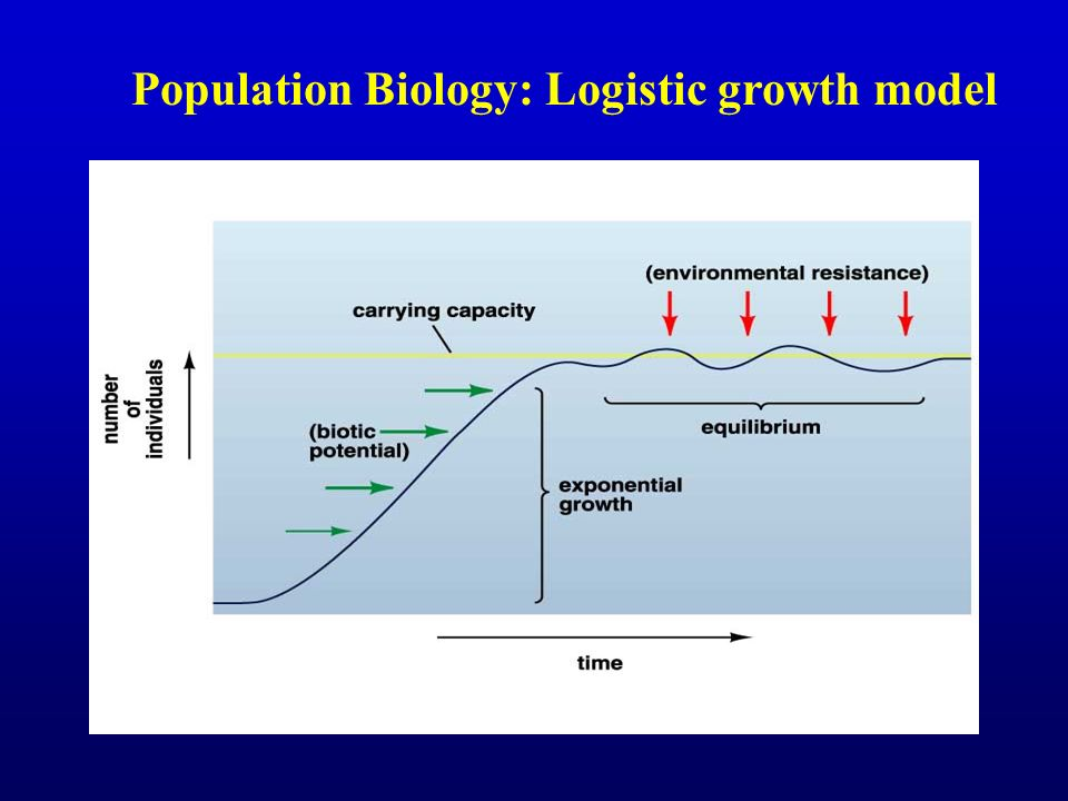 1 source A. Sharov Population Ecology web course - ppt ...
