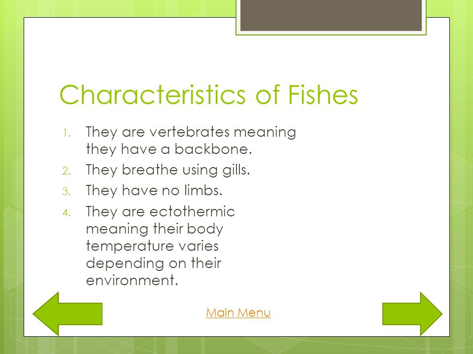 Basic animal groups charlotte martin references ppt for Characteristics of fish